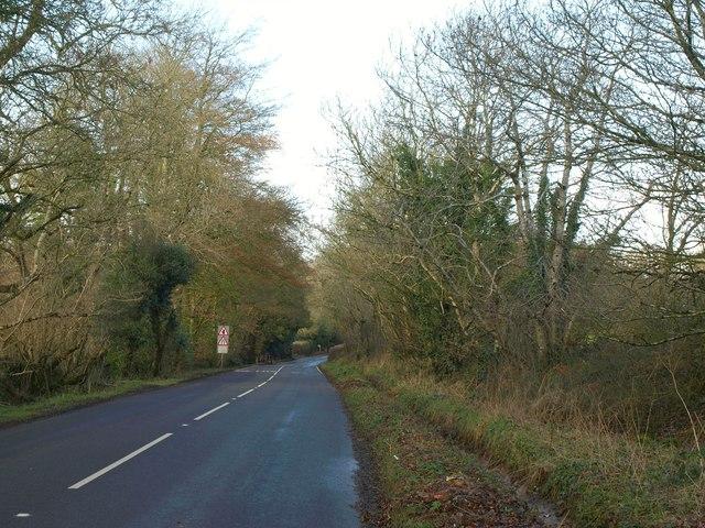 Limers Lane