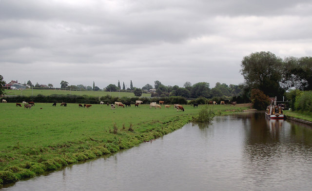 Canal and pasture near Burston, Staffordshire