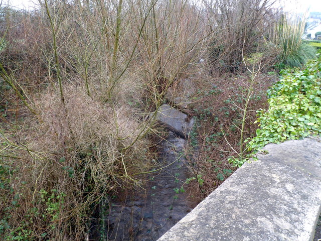 Mounton Brook, Pwllmeyric