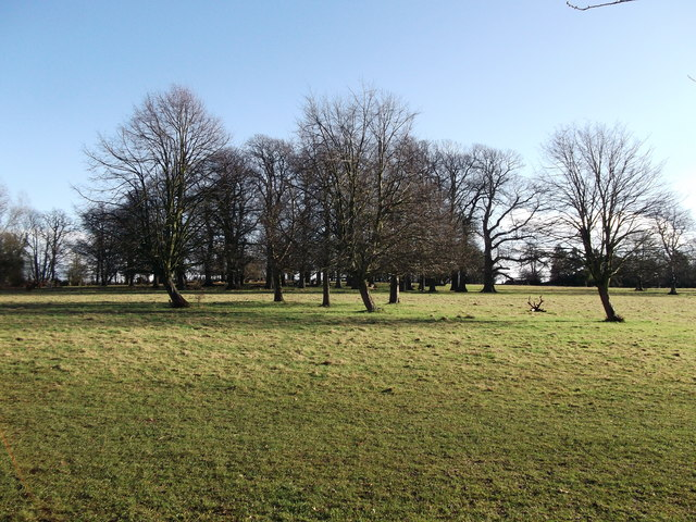 Chestnut Paddock, Manor Park Country Park