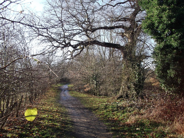 Path in Manor Park Country Park