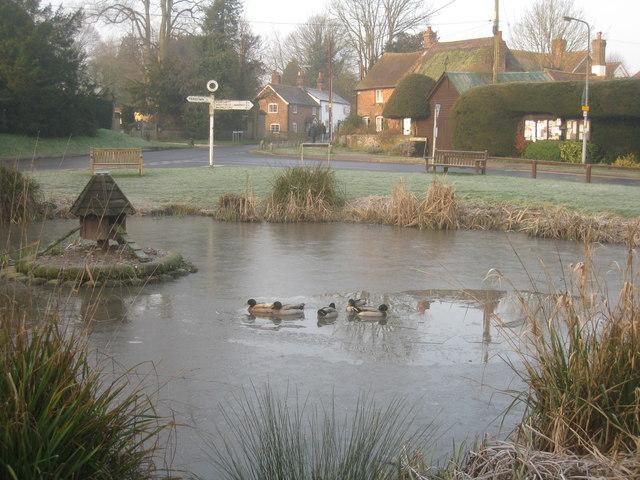 Thin ice - Oakley village pond