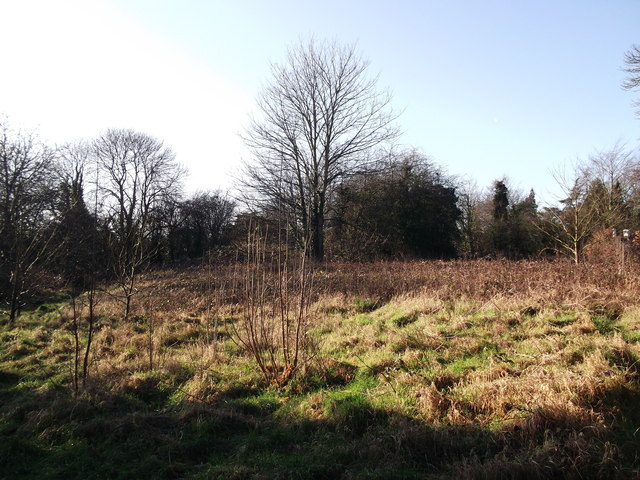 Ice House Field, Manor Park Country Park