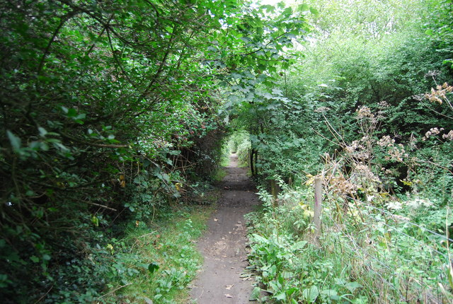 Footpath to Cobtree Wharf