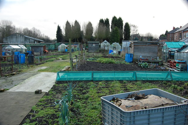 Allotments to the rear of Station Road