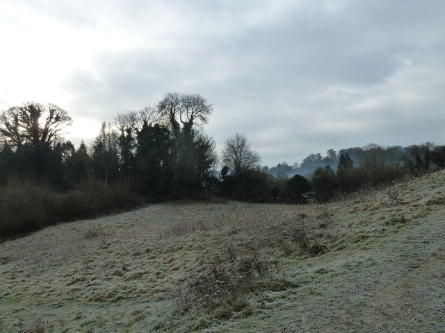 A chilly January morning near Oakhanger Stream (A)