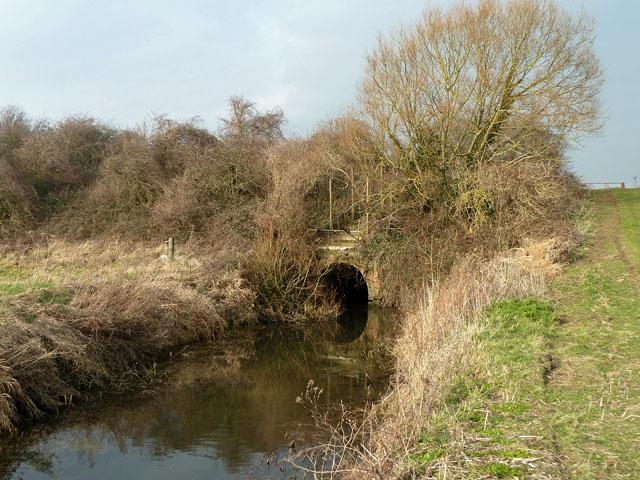 Canal aqueduct over Aldingbourne Rife
