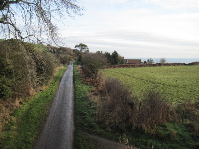 Hood  Lane  to  Sycarham  Farm