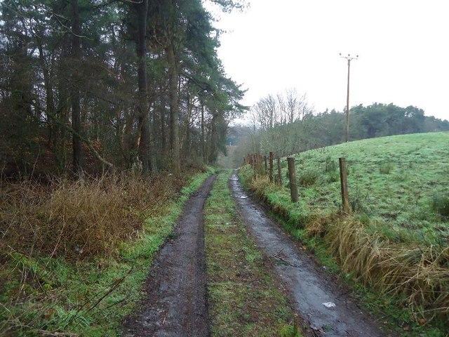 Castlecary, farm track
