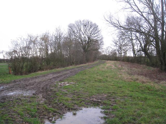 Geeseness Lane