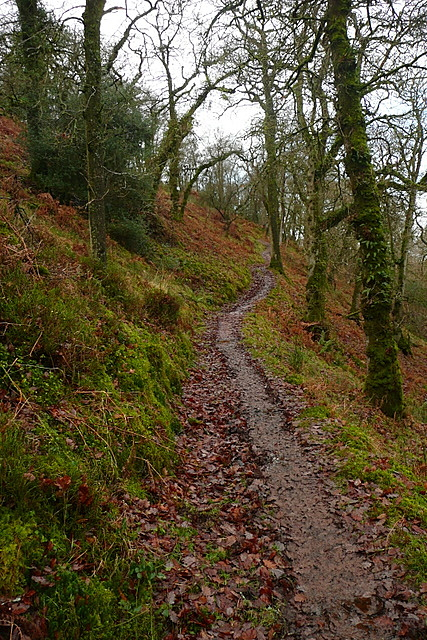 Path rounding Hollow Combe