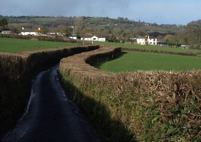 Lane to the nursery, Tower View Farm