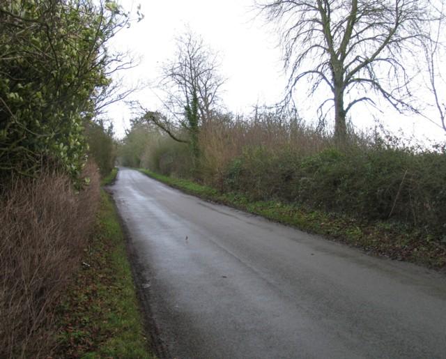 Pasture Lane leaves Gaddesby