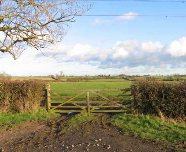 Gate into a field east of Gaddesby Lane