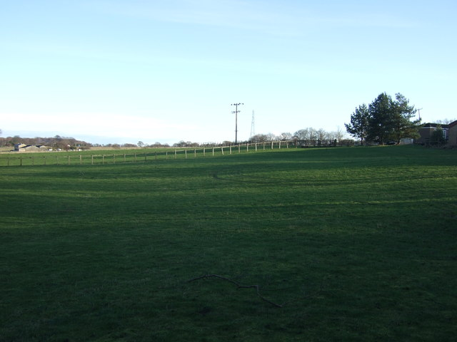 Farmland, Miry Carr