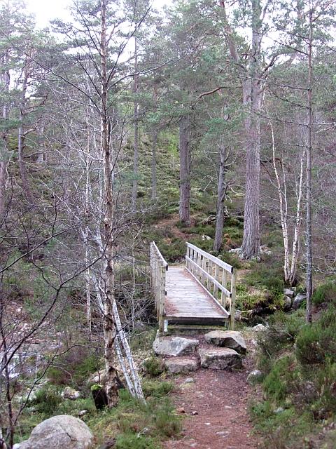 Bridge over the Allt a' Mharcaidh (2012)