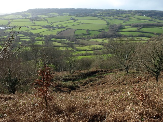 Western slopes of Dumpdon Hill