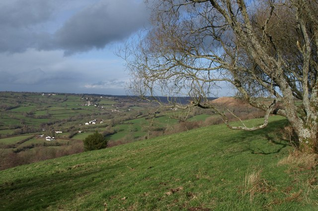 On Dumpdon Hill