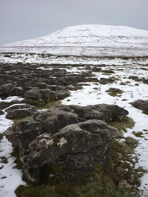 Limestone clints, Fell Close
