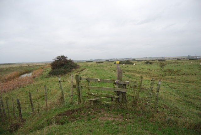 Stile, Halstow Marshes
