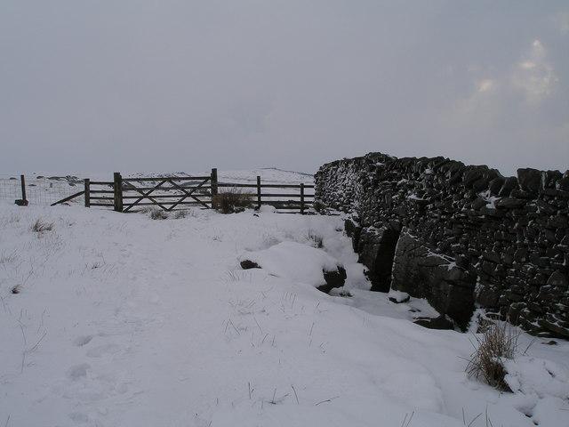 Gate on the Capplestone path near Langcliffe Pot