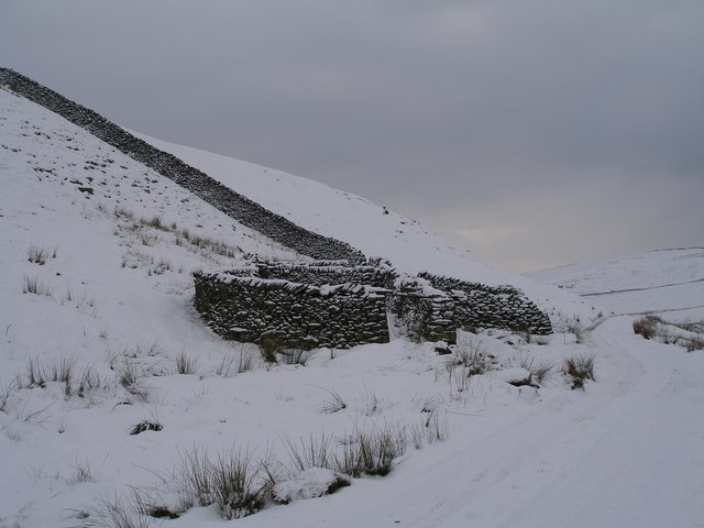 Sheepfold near Mossdale Scar