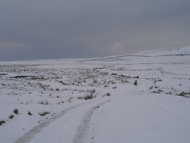The Mossdale track at Bycliffe