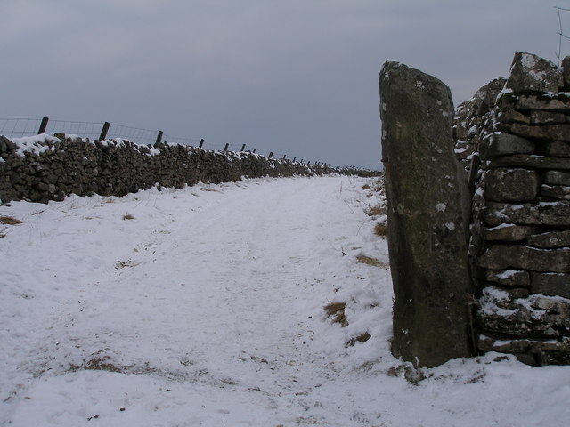 Cut benchmark on gatepost at the northern end of Green Lane