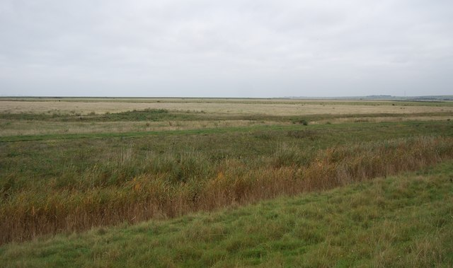 Ditch, Halstow Marshes