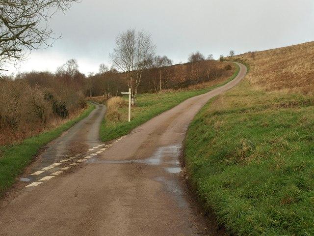 Lane junction, Hartridge Common