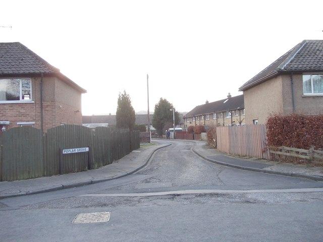 Poplar Grove - Glenwood Avenue