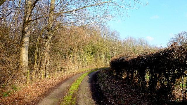 Byford Common Lane