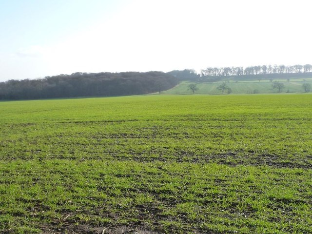 Farmland south-east of Watchley Lane