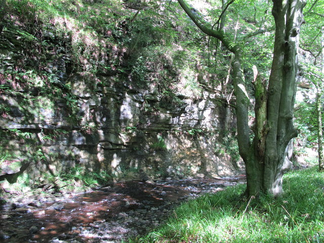 Crags at a bend in West Dipton Burn