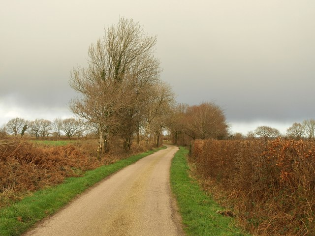 Lane on Hartridge