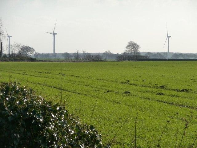 Farmland south of Bilham Lane