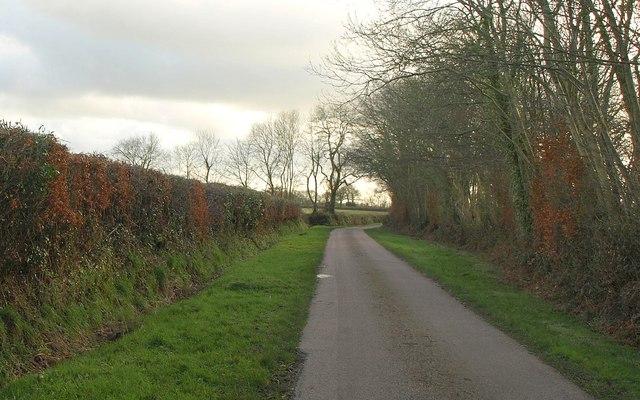 Lane near Mattys Cross
