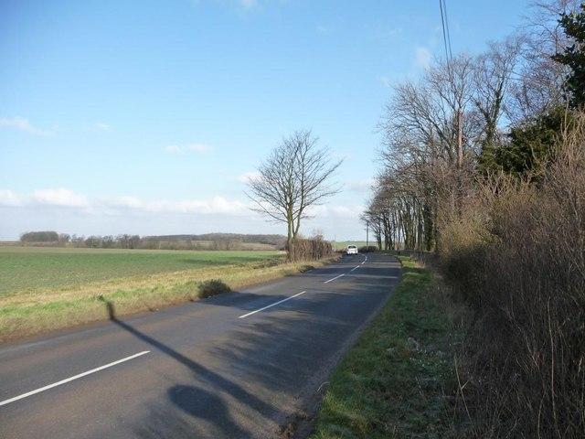 Street Lane in the winter sun