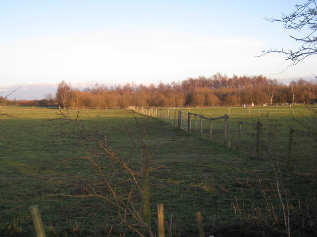 Paddocks by Rugged Butts Lane