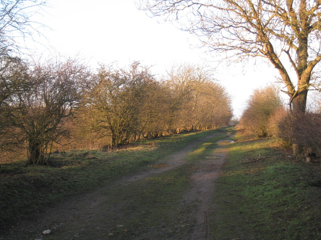 Rugged Butts Lane (2)