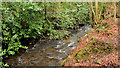 J3583 : The Three Mile Water, Whiteabbey (2) by Albert Bridge