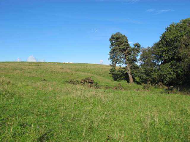 Rough pastures below Currick Hill