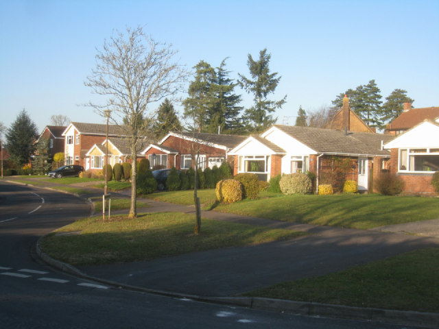 Bungalows in Avon Road
