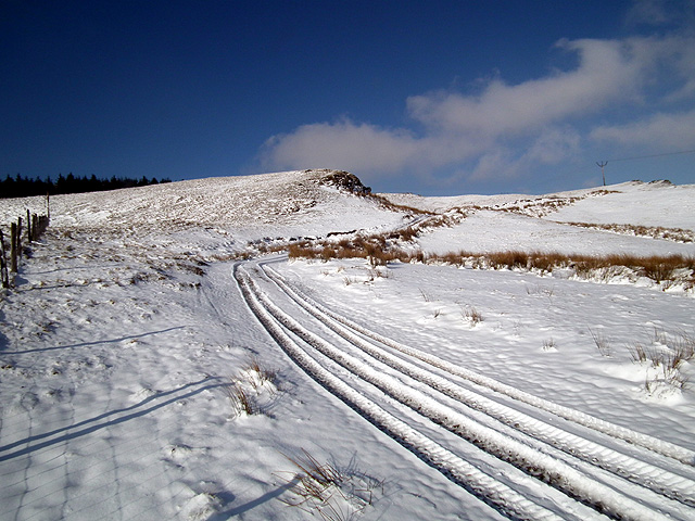 Tracks in the snow at Yr Ochrydd