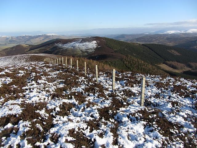 Fence, Cardon Hill