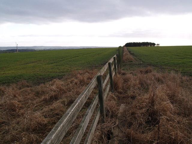 Farm Land near Greymare Hill
