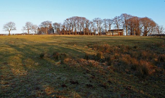 Nervelstone Farm