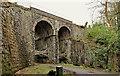 J3583 : Bleach Green viaducts (1) by Albert Bridge
