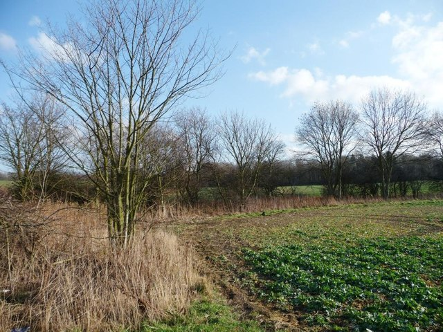 Hooton Pagnell Common is now a crop field