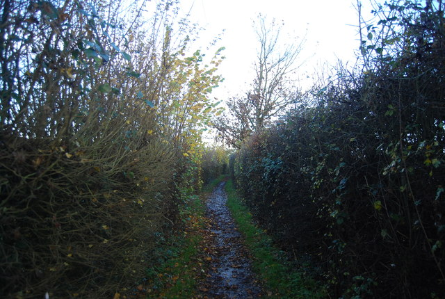 Bridleway heading north